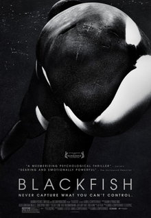 Movie Trailers: Blackfish