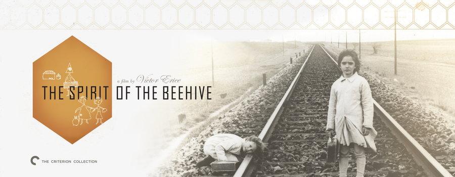 spirit of the beehive essay