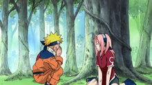 Naruto 10: The Forest of Chakra