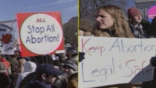 Thirty Years After Roe V. Wade