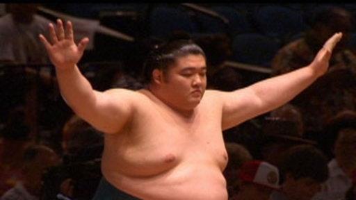 Sumo Spotlight