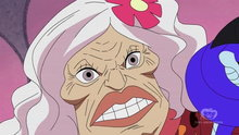 One Piece 411: (Sub) The Secret Hidden on the Backs – Luffy and the Snake Princess Meet