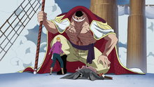 One Piece 472: (Sub) Akainu's Plot! Whitebeard Entrapped!