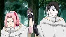 Naruto Shippuden 212: Sakura's Resolve