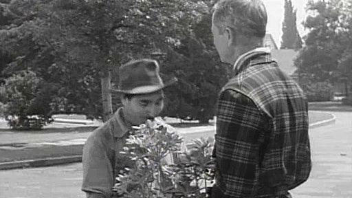 Margaret Hires a Gardener