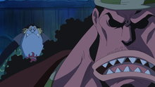 One Piece 541: (Sub) Kizaru Appears! a Trap to Catch Tiger!