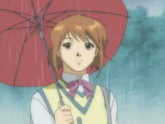 Bittersweet Rain image