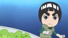Naruto Spin-Off: Rock Lee & His Ninja Pals 28: Hunting for Matsutake Mushrooms! / Lee and Neji Part Ways!