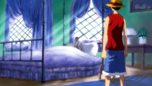 One Piece 239: (Sub) The Straw Hat Pirates Are the Culprits? The Protectors of the City of Water!