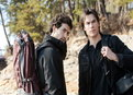 The Vampire Diaries: Into the Wild