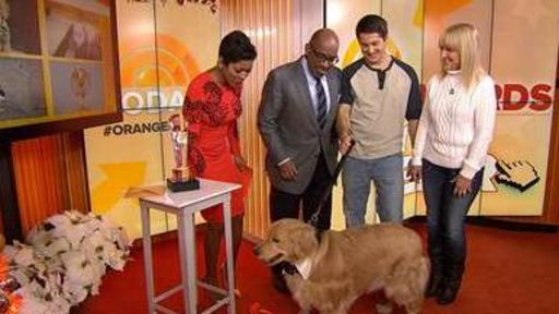 Viral Blind Puppy Wins Orange Room Award