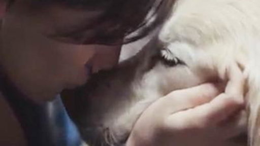 Tear-jerking Chevy Puppy Ad Goes Viral