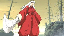 Inuyasha 100: The Truth Behind the Nightmare: Battle in the Forest of Sorrow