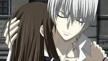 Vampire Knight 13: Vampire Knight