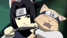 Naruto Shippuden 189: Sasuke's Paw Encyclopedia