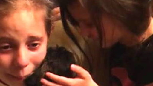 Tears of Joy: Watch Little Girl Get Surprise Puppy