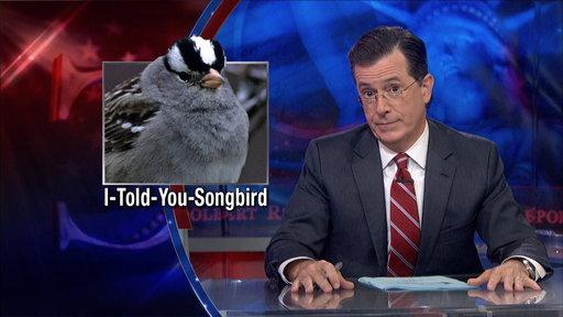 Global Warming Threatens Bird Species