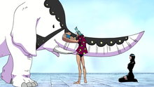 One Piece 306: A Mysterious Mermaid Appears? As Consciousness Fades Away…