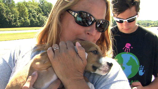 Pilots Save Dogs from Kill Shelters With Volunteer Program