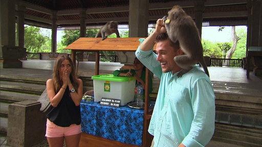 A Monkey Pees On Chris